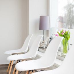 fotograf-dresden-businessfotograf-tierarzt-hund-detail4