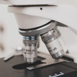 fotograf-dresden-businessfotograf-tierarzt-hund-mikroskop