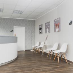 fotograf-dresden-businessfotograf-tierarzt-hund-wartezimmer3
