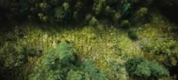Luftbilder-Drohnenfotografie-Luftaufnahmen-Dresden--Header
